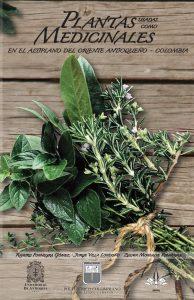 Salvia de pantano, Salvia de altiplanicie