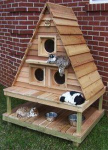 Casitas Para Gatos Exterior