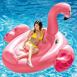 Cisne Rosa Inflable