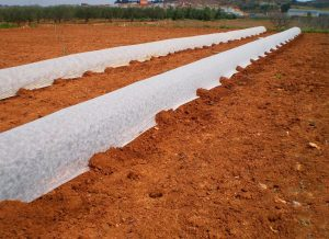 Mantas Termicas Agricolas