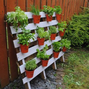 7 ideas para crear un jardín vertical de una manera simple y económica