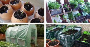 8 formas creativas de crear un huerto