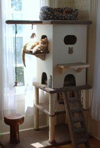 Cómo crear un rincón para el gato dentro de la casa