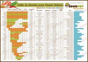 El calendario de cultivo del tomate